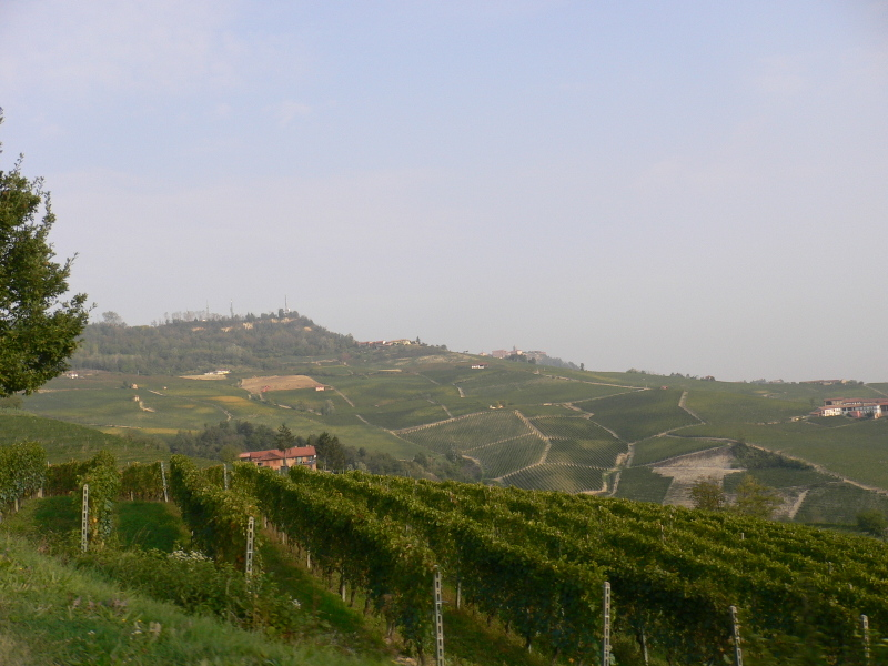 Barolo_october_2007_065_2